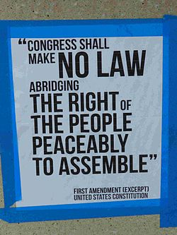 meaning of freedom of assembly