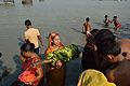 Offering to Sun God - Chhath Puja Ceremony - Baja Kadamtala Ghat - Kolkata 2013-11-09 4261.JPG