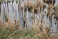 Ohrtbrookgraben 06.jpg