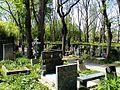 Olšanské hřbitovy 20.jpg