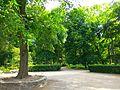 Oleksandria dendropark May 2016 2.jpg