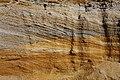 Oleksandrivsky Reserve Sand Layers.jpg