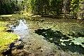 Oostriku järvik.jpg