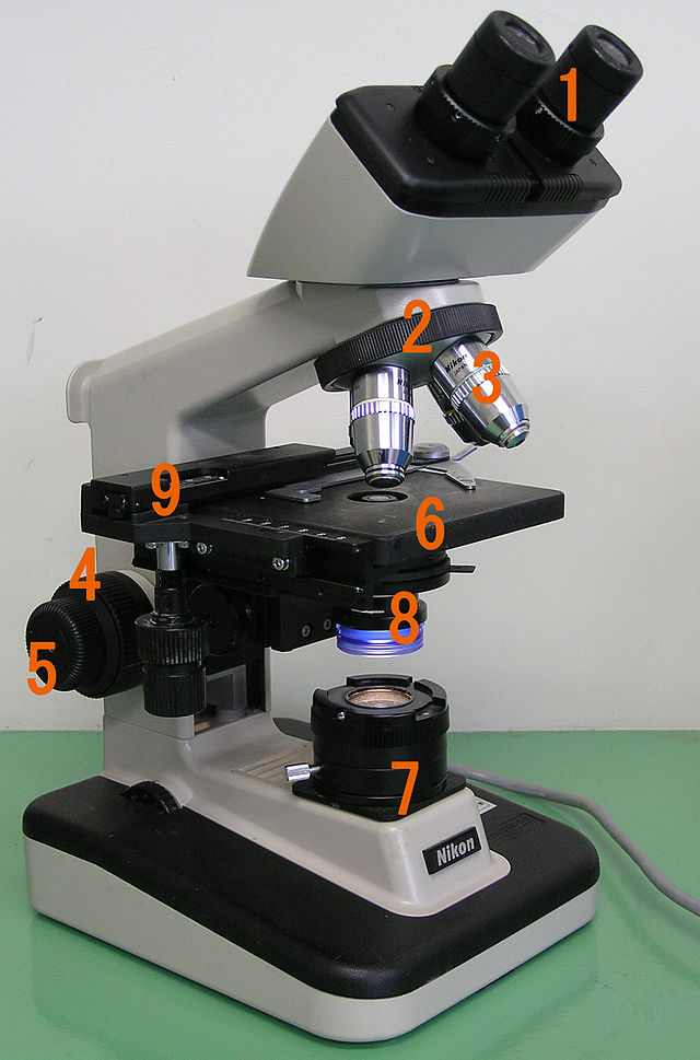 Optical microscope wikiwand from wikipedia the free encyclopedia ccuart Image collections