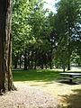 Oregon Park, Portland, OR.jpg