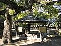 Osaka Castle Rennyo shounin kesagake no matsu.JPG