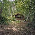 Overzicht prieel in de bossen - Ermelo - 20376273 - RCE.jpg