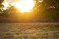 Pôr do sol!.jpg