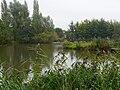 P1030141 copyPark Brabantpark.jpg