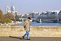 P4110093 Paris IV vue sur le pont Austerlitz reduct.jpg