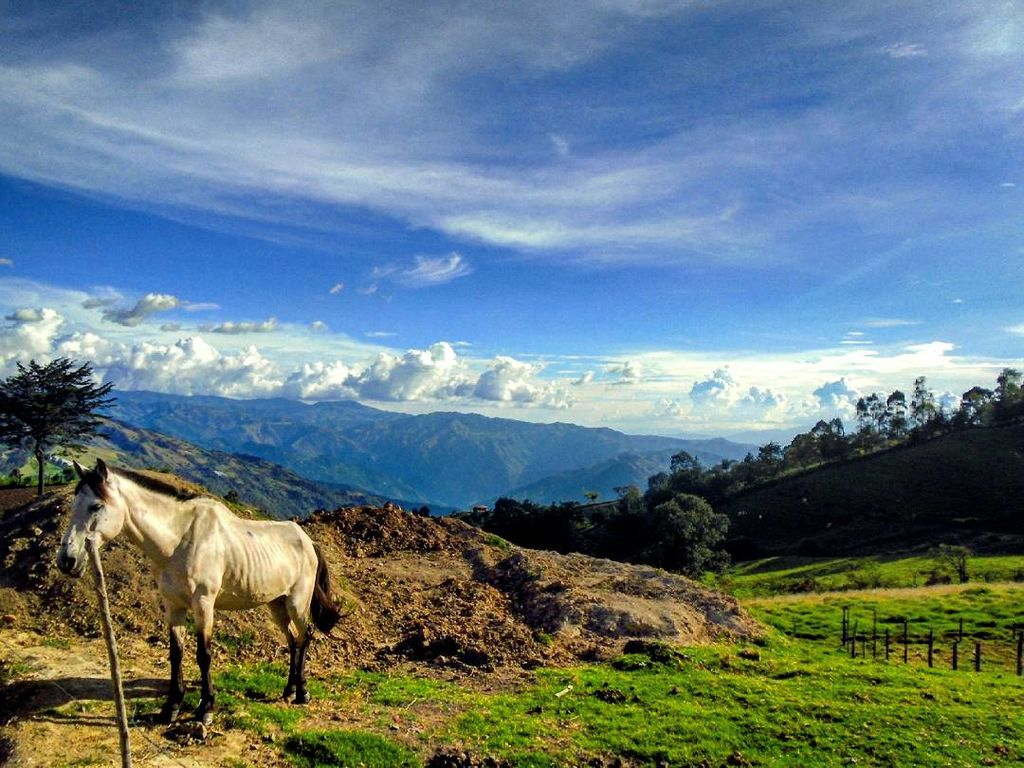 File:Paisaje desde Sonsón, Colombia.jpg - Wikimedia Commons