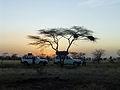 Parc national d'Awash-Ethiopie-Coucher du soleil.jpg