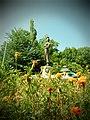 Parcul Herastrau (9466224096).jpg