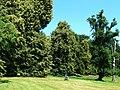 Park w Starzyńskim Dworze..jpg