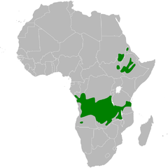 Parus leucomelas distribution map.png