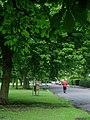 Pearson Park, Hull - geograph.org.uk - 892101.jpg