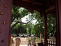 People around Tainan Confucius Temple.jpg