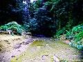Pequeño Tributario al Rio Y-Y. - panoramio.jpg