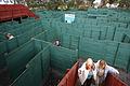 Phillip Island A Maze'N Things maze.jpg