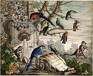 Pieter Casteels III - Set of 12 Bird Scenes – Plate 1