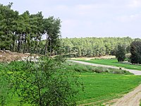 PikiWiki Israel 53236 winter landscape in the forest.jpg