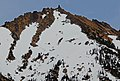 Point 8183 Joey on Kangaroo Ridge.jpg