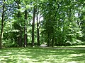 Poland. Warsaw. Śródmieście. Royal Baths Park 056.jpg