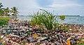 Pollution in Maracaibo lake.jpg