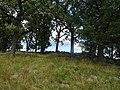 Pope Farm Conservancy - panoramio - Corey Coyle (18).jpg