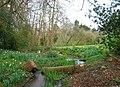 Poynings Stream - geograph.org.uk - 377000.jpg