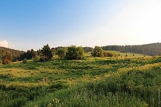 Prigorodny District, Sverdlovsk Oblast - Natural landscape in Prigorodny District