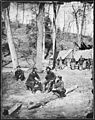 Prof. Maillefert and Naval Officers at Torpedo Station on James River. Probably taken in April or May 1865. Prof.... - NARA - 524638.jpg