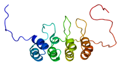 Protein CDKN2A PDB 1a5e.png