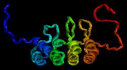 Proteína CDKN2A PDB 1a5e.png