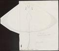 Pteroplatea micrura - 1700-1880 - Print - Iconographia Zoologica - Special Collections University of Amsterdam - UBA01 IZ14200109.tif