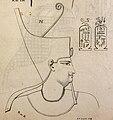 Ptolemy VIII Euergetes II.jpg
