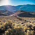 Pueblo Mountains, in the Pueblo Mountain Wilderness Study Area (38017847326).jpg