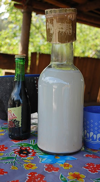 Pulque - Bottle of unflavored pulque with bamboo cap