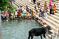 Pushkar (8043099623).jpg
