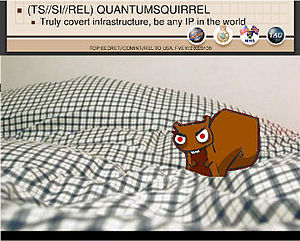 Tailored Access Operations - Image: QUANTUMSQUIRREL