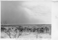 Queensland State Archives 5276 Dust Storm Hungerford to Thargomindah S Route January 1955.png