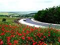 R30, Moldova - panoramio (19).jpg