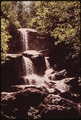 ROCK FALLS IN MACINTYRE BROOK NEAR ALGONQUIN PEAK TRAIL - NARA - 554409.tif