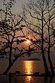 Relaxing at sunset (5505330850).jpg