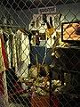 Revenge of the Mummy (Universal Studios Florida) queue 03.jpg