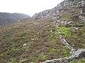 Rhinog Fawr on the left - geograph.org.uk - 1337077.jpg