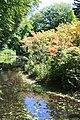Rhododendronpark Bremen 20090513 067.JPG