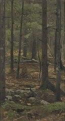 In het woud van Rominten