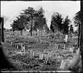 Richmond, Va. Graves of Confederate soldiers in Oakwood Cemetery, with board markers LOC cwpb.00453.jpg