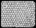 Ringbrynja med lång ärm - Livrustkammaren - 27816.tif
